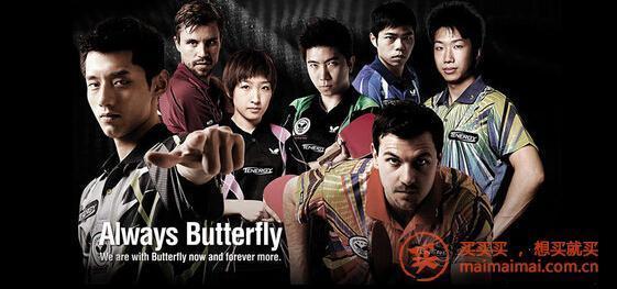 日淘乒乓球器材主要品牌介绍