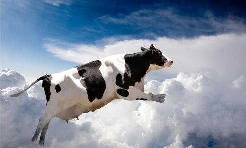 澳洲奶粉即将免税入华 教你怎样选购进口奶粉