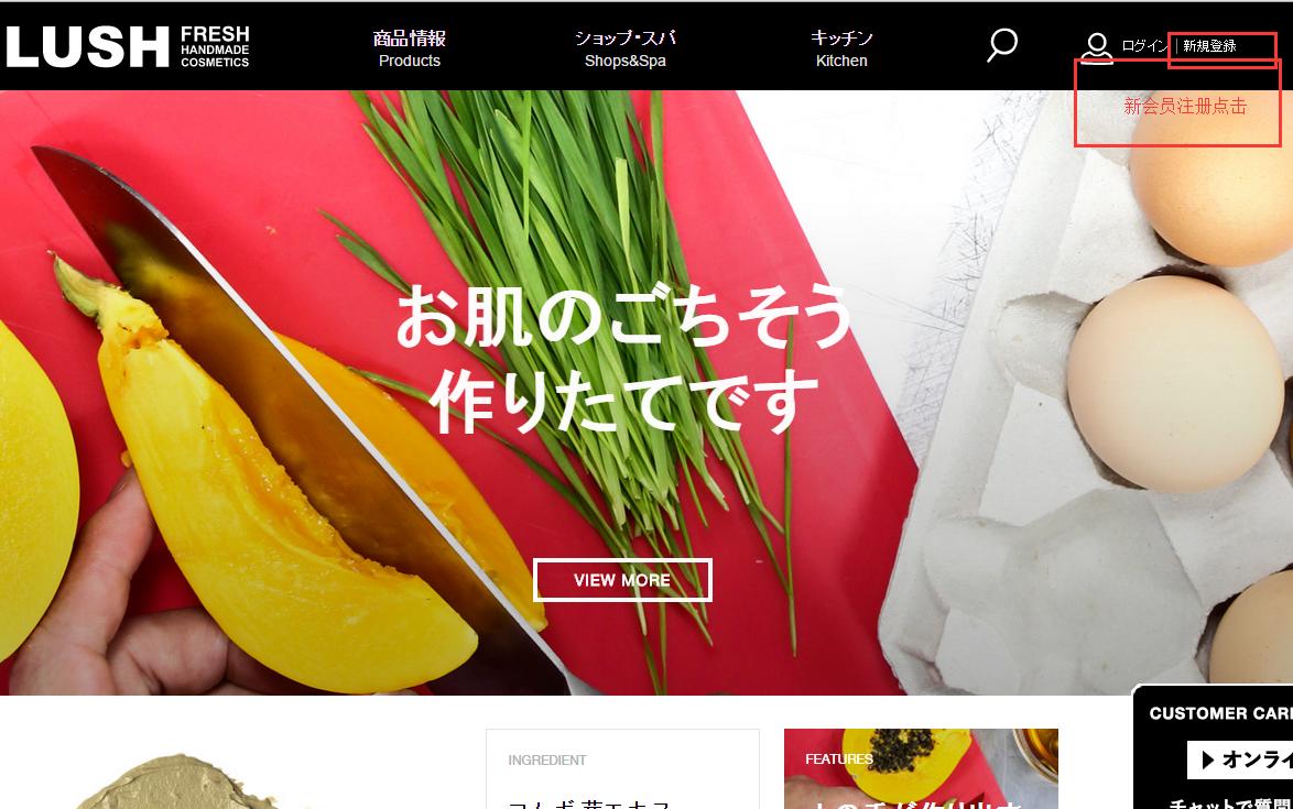日本lush官网最新注册海淘攻略 及人气宝贝推荐:洗发皂,面膜