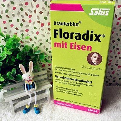 Salus Floradix铁元补铁补血营养液 500ml*3瓶 新低价€36,约278元