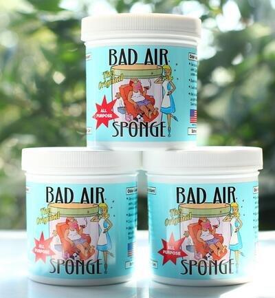 Bad Air Sponge空气净化剂 1磅*12罐 Prime会员到手约¥764,折合¥63 7 罐