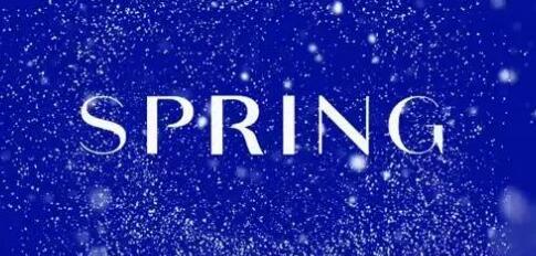 新一代时尚购物网站Spring 预计2017年总销售额将超过 1亿美元