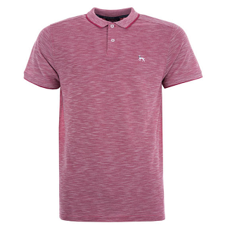 【品牌大集合】Bewley and Ritch男士暗红色Polo衫,4 6折报价为£15 99(约¥138)