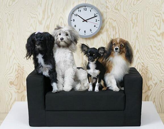 IKEA宜家发布了首个宠物家具系列LURVIG
