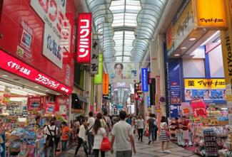 日本海淘转运费用要多少? 海带宝转运日本转运价格详情