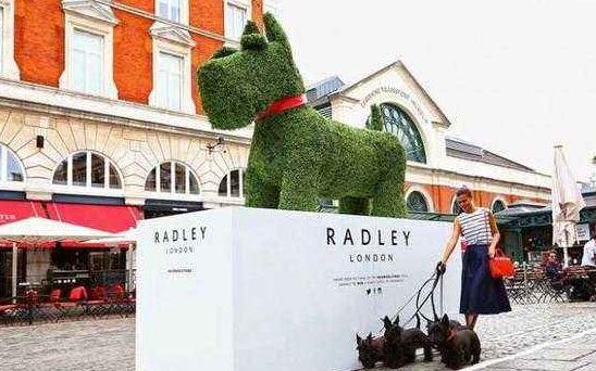 radley是哪个国家的牌子 是什么级别